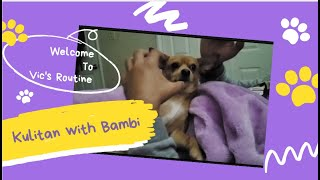Download KULITAN WITH BAMBI/VIC'S ROUTINE