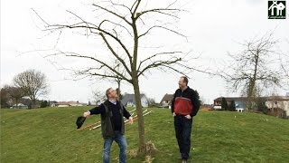 Repeat youtube video Baumpflege ohne Leiter - Tipps zum richtigen Baumschnitt - gartenHELDEN 166