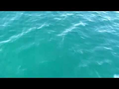 анапа видео города