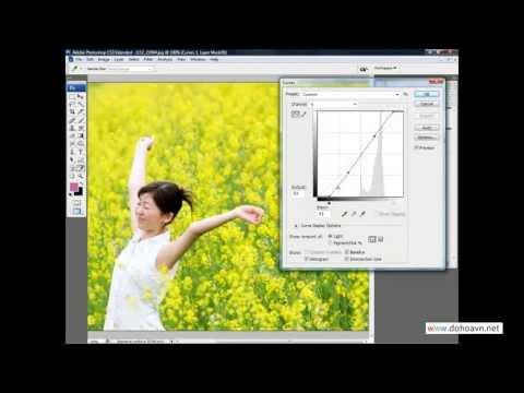Học Photoshop - Phương pháp lọc màu làm tươi màu bằng hệ màu LAB