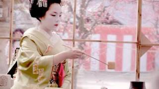 Plum Blossoms, Green Tea, and Pretty Geisha - Ume Matsuri at Kitano Tenmangu Shrine, Kyoto