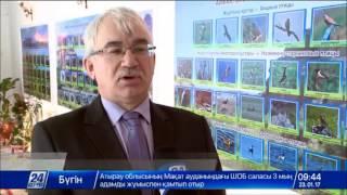В  Семее открылась  выставка «Природа Чингизтау»
