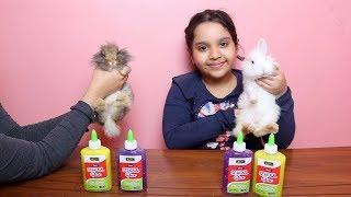 تحدي الأرانب يختاروا مكونات السلايم الجزء 2 !!! Our rabbits Pick Our Slime Ingredients Challenge