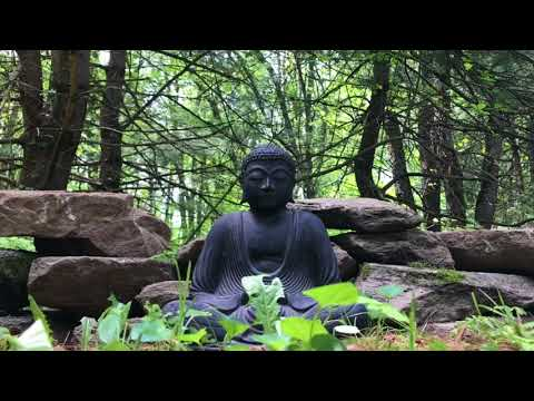 Relaxing Meditation/Yoga/Healing/Ambient Music by Chris Collins (Royalty-Free Music)