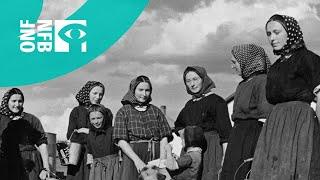 Video The Hutterites download MP3, 3GP, MP4, WEBM, AVI, FLV Mei 2018