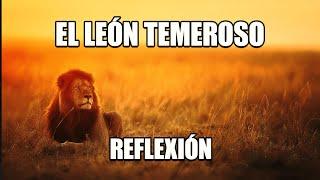 REFLEXION - EL LEÓN TEMEROSO, Reflexiones Diarias, Cortas, Mejor Persona, Pensamientos Positivos.
