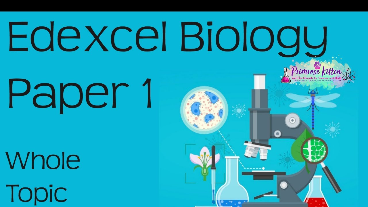 The whole of Edexcel Biology Paper 1 in only 84 minutes!! Revision for 9-1  GCSE Bio Combined Science