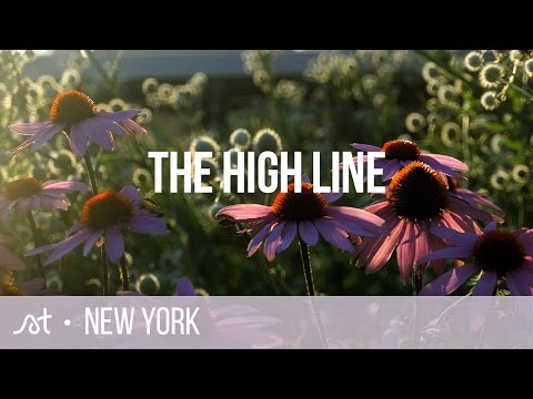 The High Line | Greenwich Village | New York