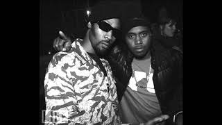 Nas - Highly Favored - Instrumental (reproduced by Kuaqs30)