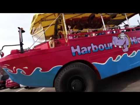 Hippopotabus - Join us for the Harbour Hippo Tour - Charlottetown, Prince Edward Island