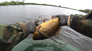 Проверка сетей Сети стояли пару часов Ловля карася и другой рыбы на севере