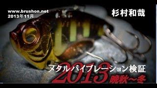 メタルバイブレーション検証 2013晩秋~冬/杉村和哉・琵琶湖 thumbnail