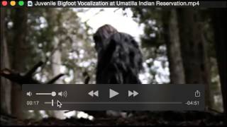 Juvenile Bigfoot Vocalization at Umatilla Indian Reservation Breakdown