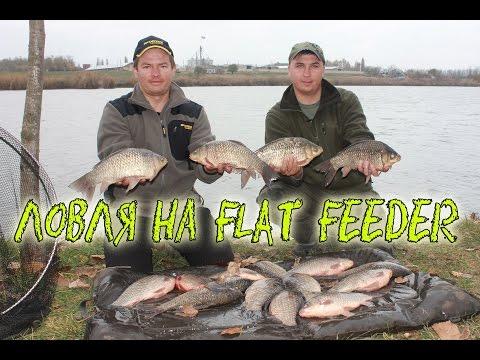 Ловля огромных карасей на Flat Feeder