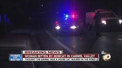 Woman bitten by bobcat in Carmel Valley