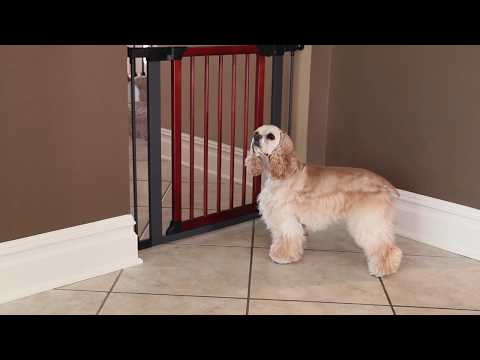 Assembly Video: Steel Pet Gate with Decorative Wood Door by MidWest Homes for Pets
