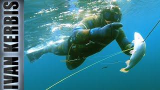 Подводная охота на форель в космосе Ангары