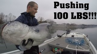 PUSHING 100 LBS!!! Catching My NEW PERSONAL BEST Blue Catfish
