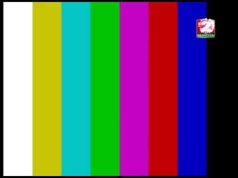 Беларусь 2 (новогодний логотип 2012)