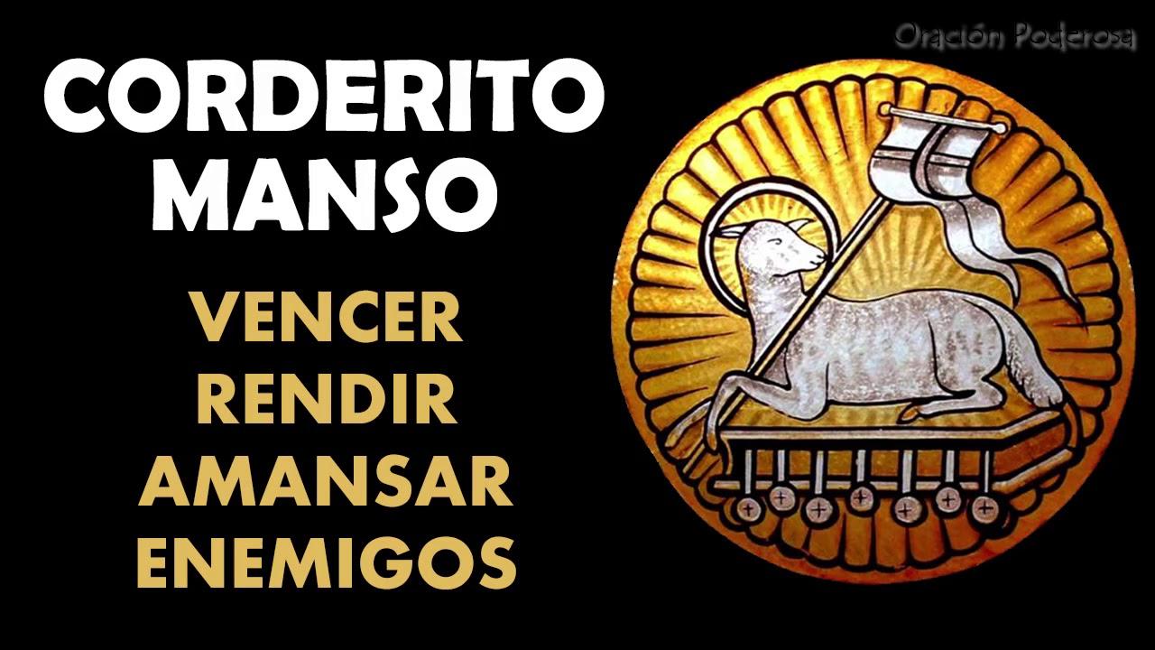 Corderito Manso, oración para vencer, rendir, amansar y dominar ...