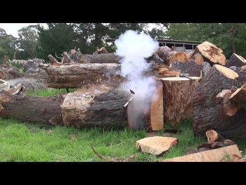 Black Powder log splitter