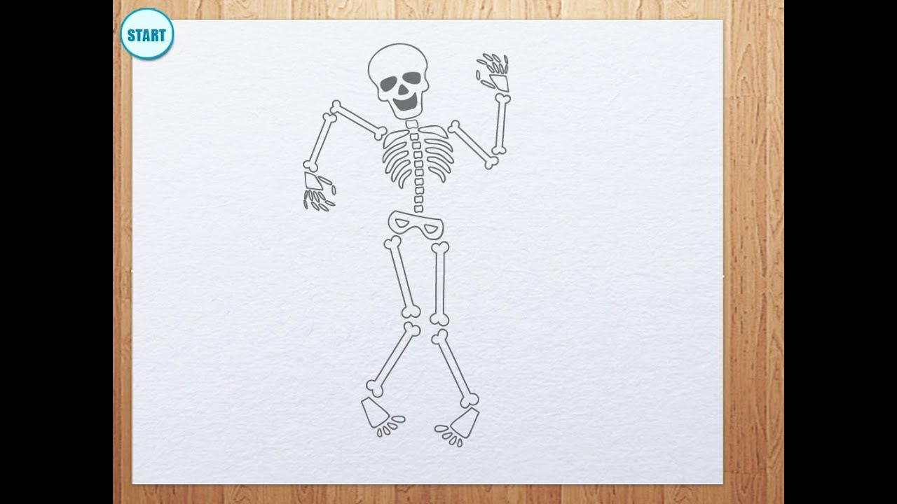 Uncategorized Draw A Skeleton how to draw skeleton youtube skeleton