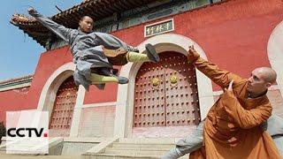 Документальные фильмы: Распространение боевых искусств