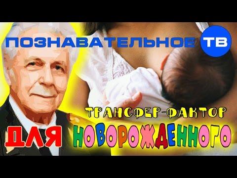 Трансфер-фактор для новорождённого (Познавательное ТВ, Иван Неумывакин)