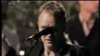 Sting -Desert rose live