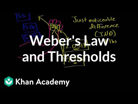 Weber's law and thresholds | Processing the Environment | MCAT | Khan Academy