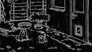 Супер кот Том попал под дождь