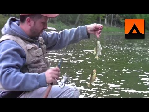 Nightcrawlers Vs Meal Worms - Which Will Catch More Panfish?