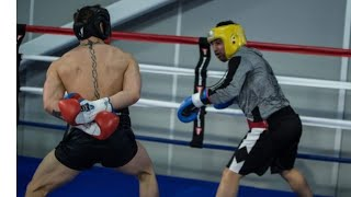 Mcgregor sparring Malignaggi Goes out of control and has to be broken-up by Joe Cortez thumbnail