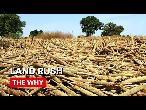 Land Rush - Why Poverty?