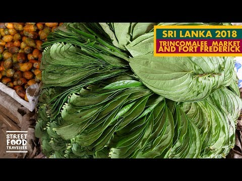 Sri Lanka | Trincomalee Market and Fort Frederick