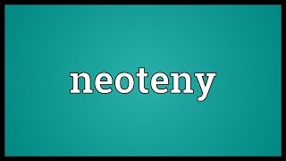 Neoteny Meaning