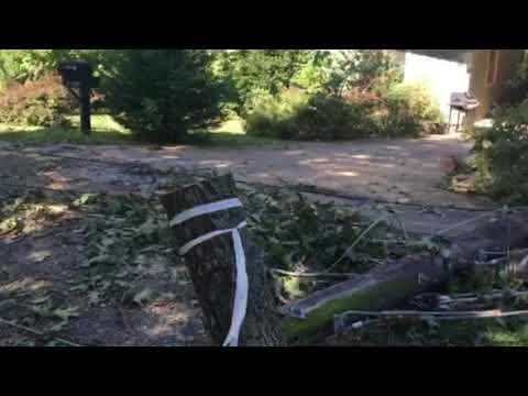 Crews In Bella Vista Work On Powerlines, Trees Downed By Storms