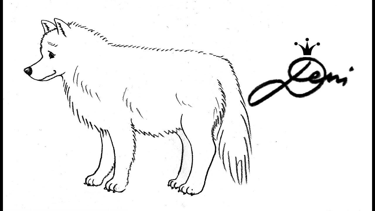 Wolf Zeichnen Einfach