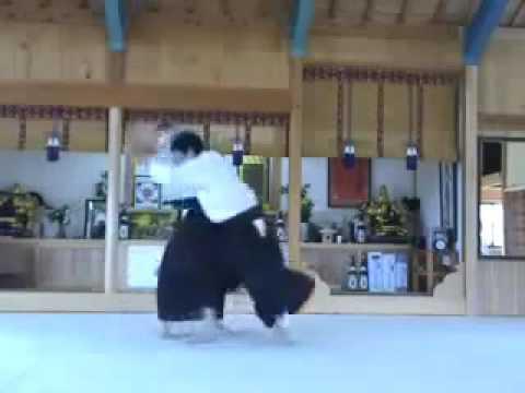 Iwama Ryu Saito Waka Sensei