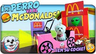 ¡Mi PERRO se va al McDonalds en su COCHE!🍟🐶Anima Dogs
