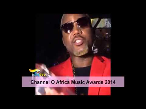 Africa Music Awards 2014 Highlights Davido,Diamond Platnumz,Olamide , Tiwa Savage And More