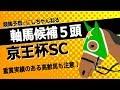 【京王杯SC 2018】重賞で実績のある高齢馬にも要注意