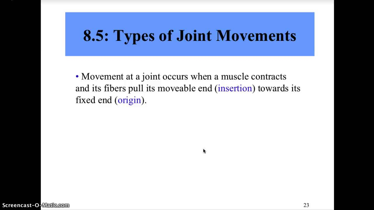 Types Of Synovial Joints Joint Movement Youtube