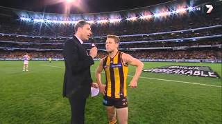 AFL 2013: LAST 5 MINUTES - Hawthorn vs. Geelong (Preliminary Final)