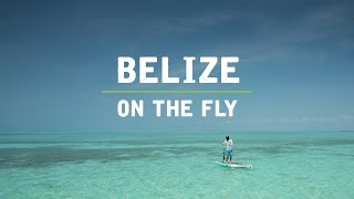 Belize on the Fly
