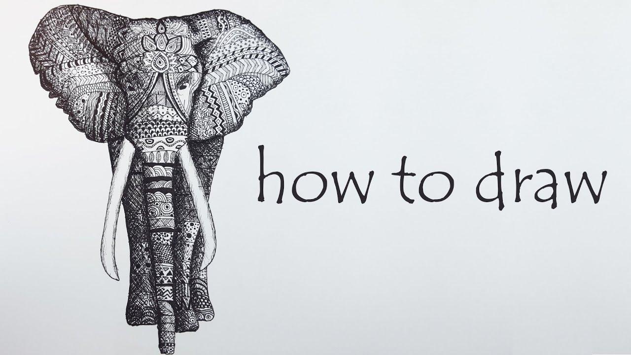 Diy Tutorial Elephant Speed Drawing Black White Mandala