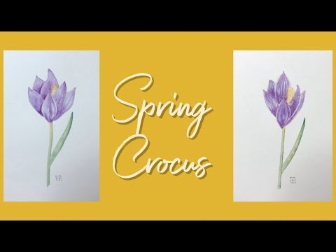 Art is for Everyone: Spring Crocus