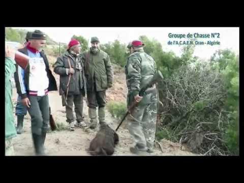 GROUPE DE CHASSE N°2 DE L'ACAEN 2013 ORAN ALGERIE.