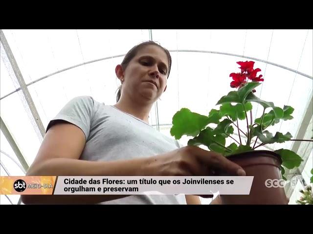 Cidade das flores: um título que os joinvillenses se orgulham e preservam