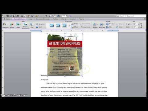 How to Insert an Image into Your Research Paper